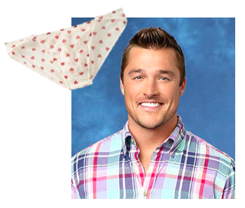 Panty dropper | Covet Living Bachelor Recap