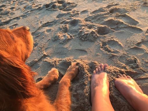 Malibu | Covet Living