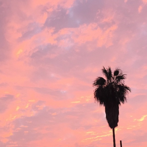 San Diego Sunset // Currently Loving // Covet Living