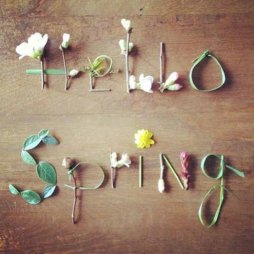 Hello Spring | Covet Living