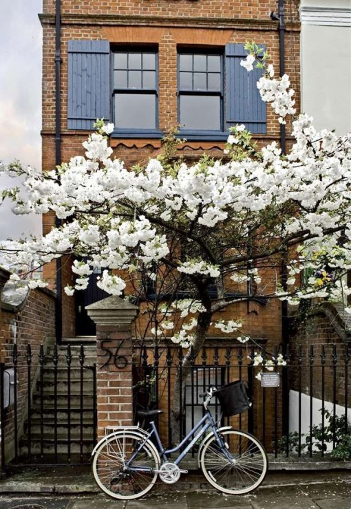 Spring in Notting Hill | Covet Living