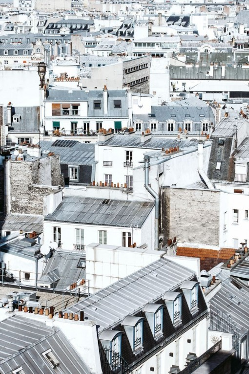 Paris Rooftops | Covet Living