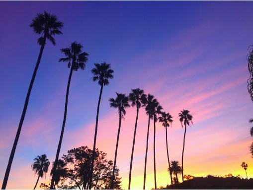 Cotton candy sunset | Covet Living