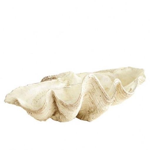 Giant Clam Bowl | Covet Living