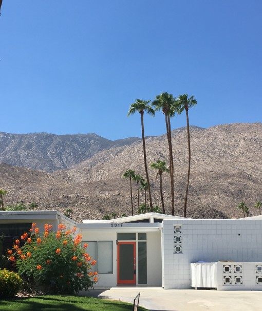 Homes of Palm Springs | Covet Living