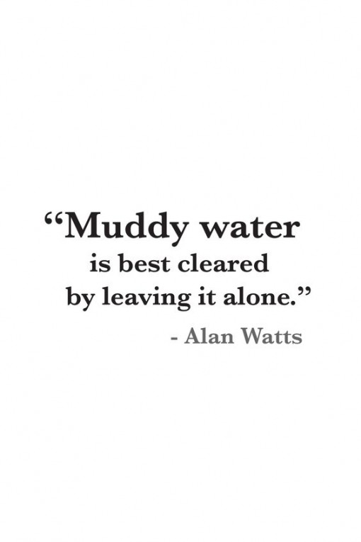 muddy-water-quote-covet-living