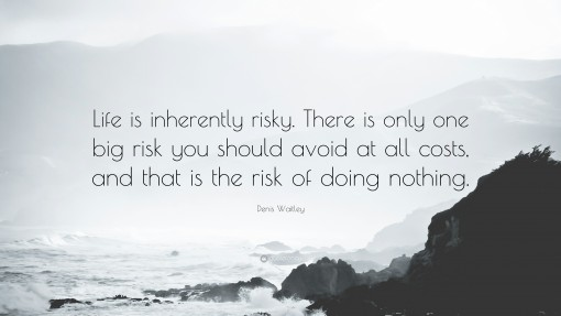 79813-Denis-Waitley-Quote-Life-is-inherently-risky-There-is-only-one-big