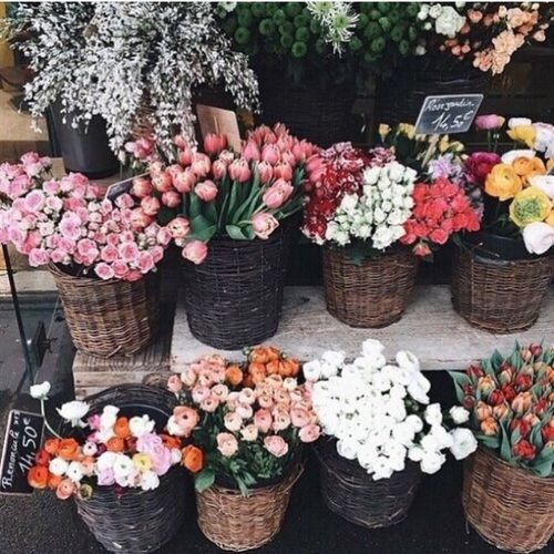 Saturday Flowers Farmers Market | Covet Living