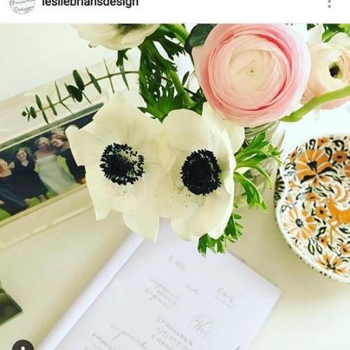 anemone | covet living